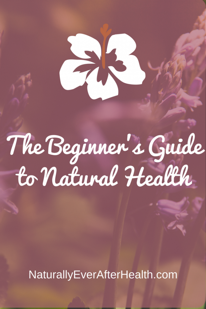 the beginner's guide to natural health